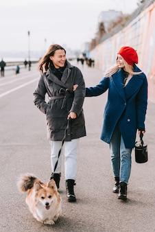 Две подруги гуляют по улице собака породы корги