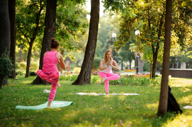 Two girls in the pink sportsuit practicing yoga in the park