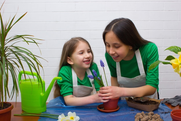 녹색 티셔츠와 앞치마를 입은 두 여자 자매가 꽃을 킁킁 거리며 꽃을 이식합니다.