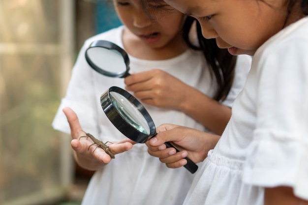 Two girls using magnifying glass watching and learning on grasshopper that stick on hand