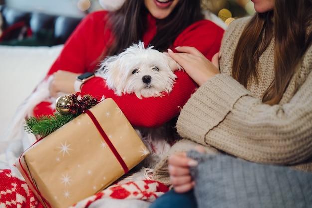 섣달 그믐 날 소파에 작은 강아지를 데리고있는 두 소녀가 앉아 있습니다.