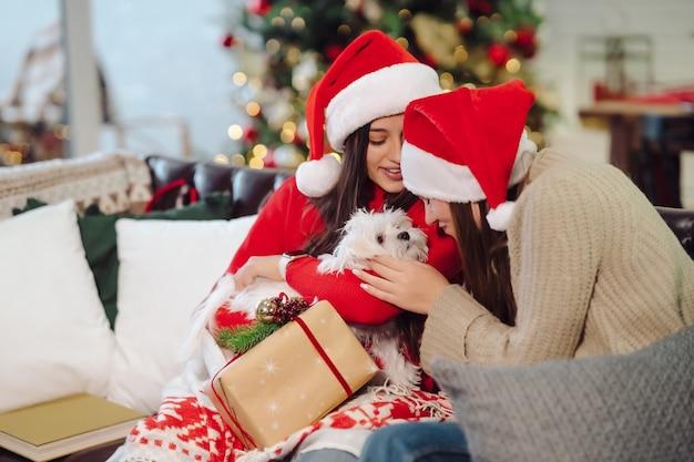 Две девушки с маленькой собачкой сидят на диване в канун нового года.