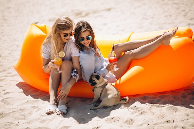 Two girls with coctails and small dog lying on pool mattress