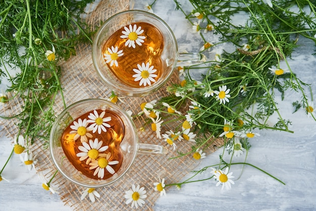 Two glass cups of tea with chamomile, scattered chamomile flowers on a piece of burlap