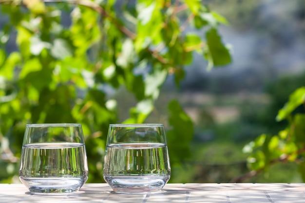 緑豊かな庭園で晴れた夏の日に澄んだ水を注ぐとグラス2杯