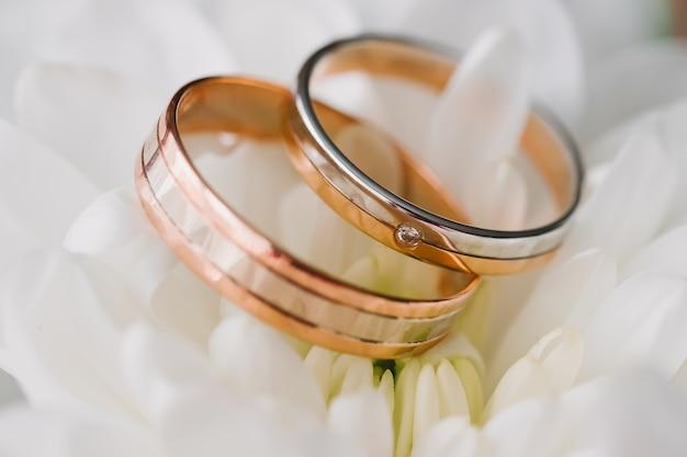 Two gold wedding rings lying on white flower macro