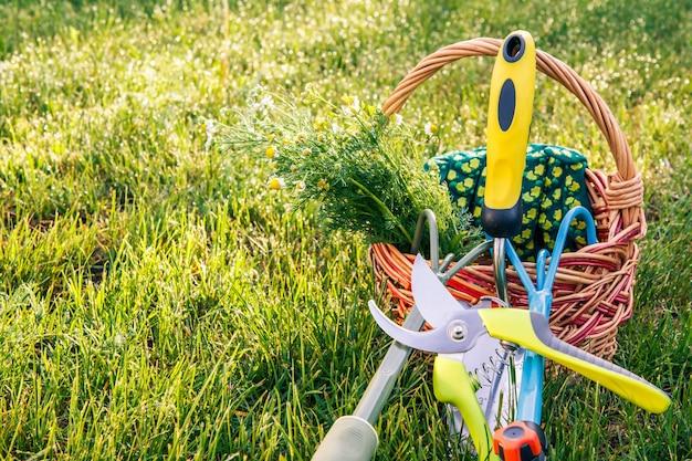 Две ручные садовые лопатки, секатор, перчатки и букет полевых ромашек в плетеной корзине с зеленой травой вокруг. садовые инструменты