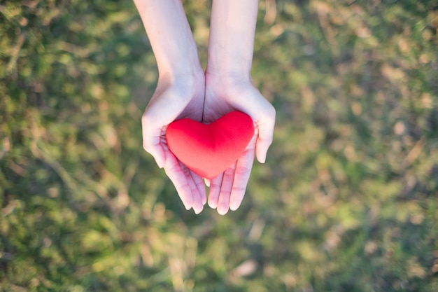Two hands holding red heart with green grass background