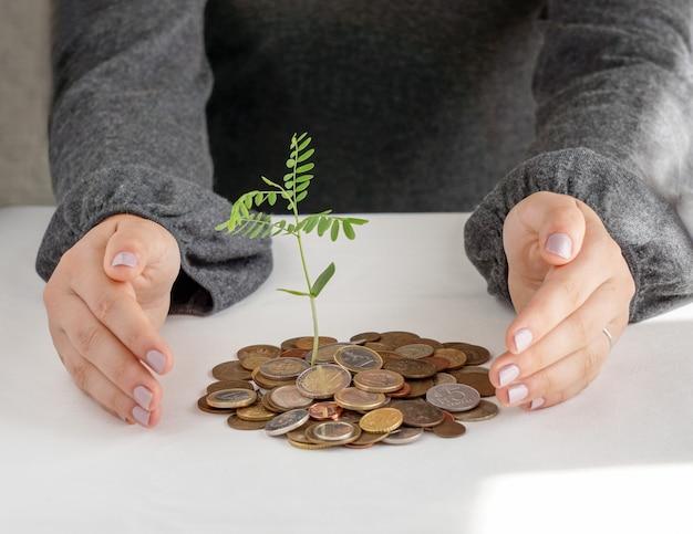 お金の山に木を植えている2つの手。