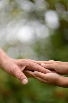 녹색 자연 배경에 대해 함께 두 손