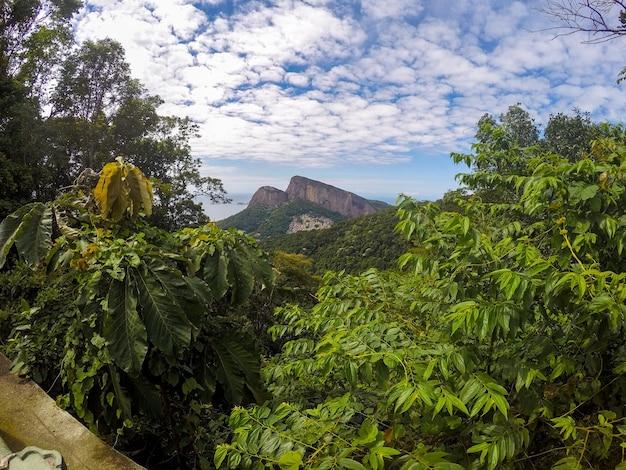리우데 자네이루 브라질에서 중국의 관점에서 본 두 언덕 형제.