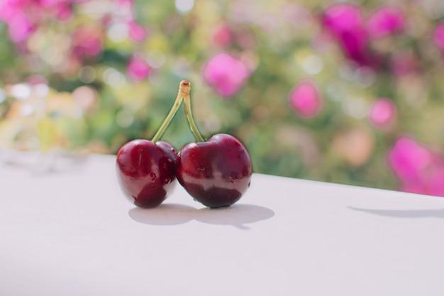 두 개의 육즙 체리 열매입니다.