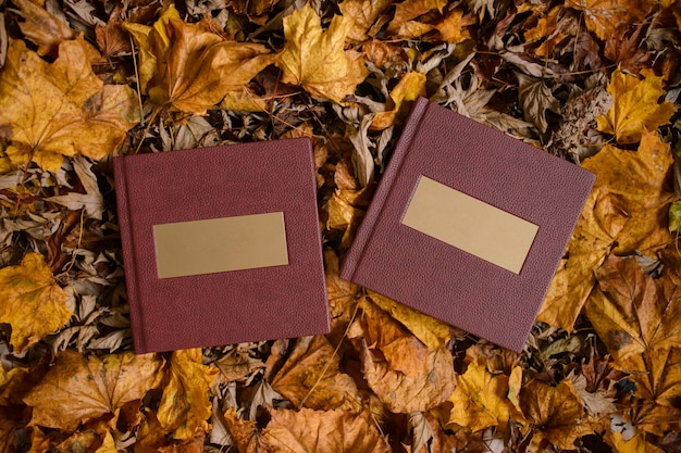茶色の葉が付いている金のネームプレートが付いている2つの革茶色の本。結婚式の写真集。テキストのための場所。