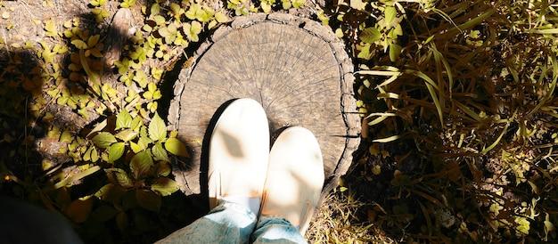 Две ноги стоят на пне, вид сверху, экология и прогулка по лесу.