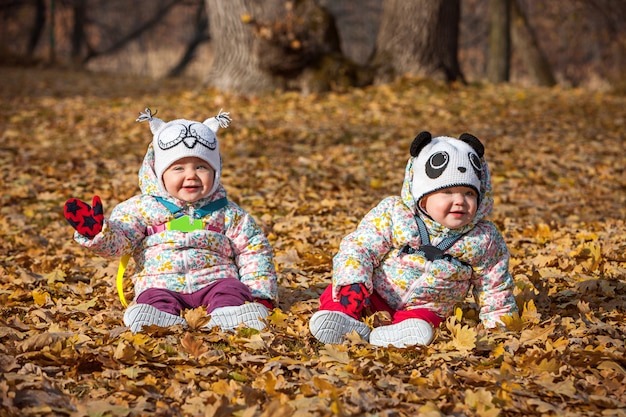 The two little baby girls sitting in the autumn leaves