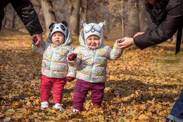 The two little baby girls standing in the autumn leaves