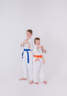 흰 기모노를 입은 두 명의 작은 소년이 흰 벽에 포즈를 취하고 있습니다.