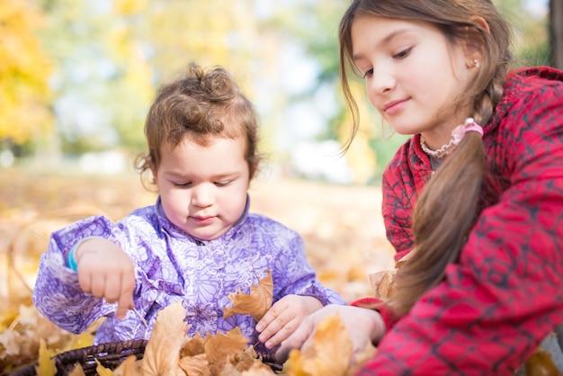 가을의 햇살 가득한 공원을 산책하는 동안 두 명의 작은 귀여운 아이, 누나와 형제가 노란 단풍잎을 가지고 놀아요.
