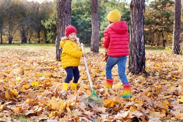 Две маленькие милые девочки сгребают кучу осенних кленовых листьев