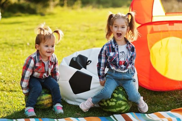 ピクニックで屋外の2人の小さなかわい子ちゃんの妹の女の子は、市松模様のシャツを着ています。スイカに座っています。