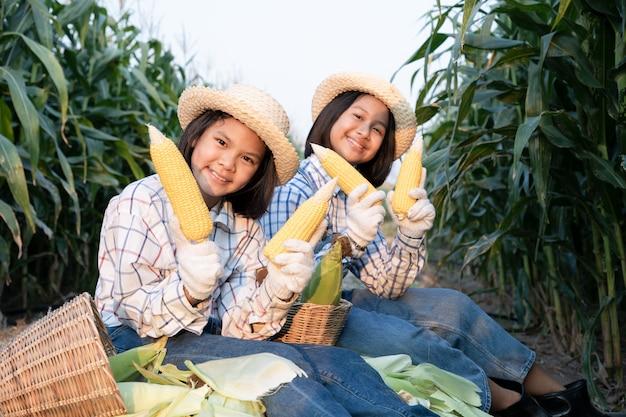 2つの小さな女の子のコンサルティングとトウモロコシ畑での製品の追跡を参照してください。トウモロコシ製品は、人間と動物のための食糧を生産するために使用されます。農業の概念。