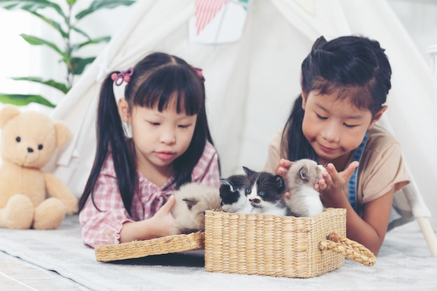 Two little girl playing with cat at home, friend ship concept.