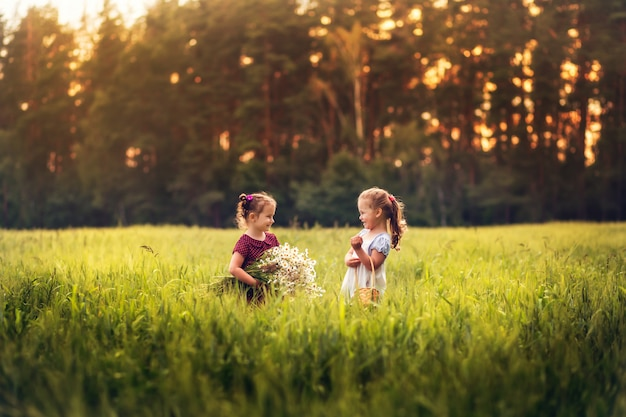 Two little girls in a meadow with flowers in summer