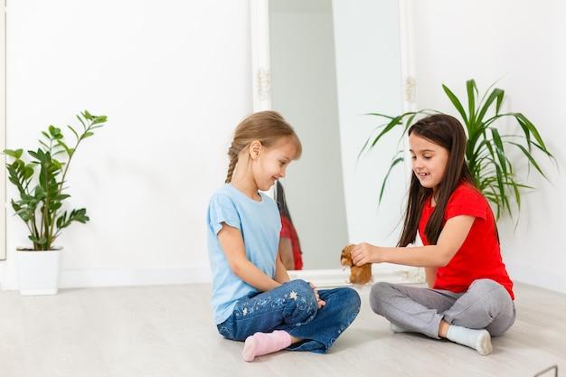 Две маленькие девочки играют с хомяком на полу дома