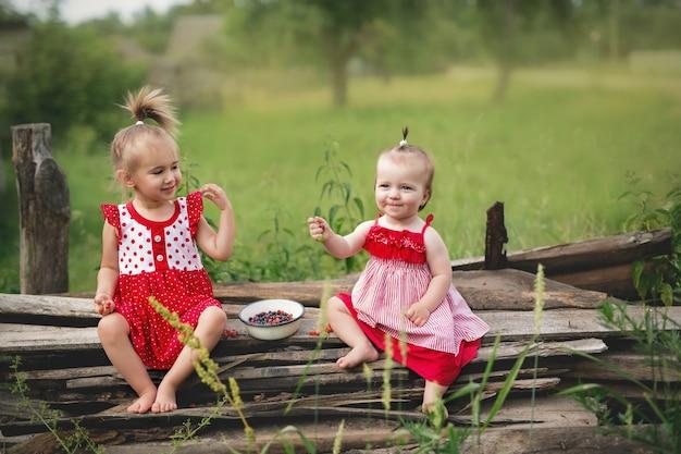 2人の妹が座ってブルーベリーを食べています