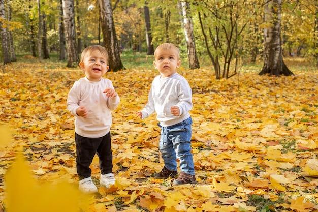 두 명의 어린 유아가 가을 공원에서 떨어지는 단풍 아래서 웃는다