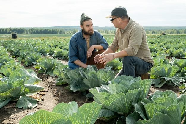 현장에서 일하는 동안 작업 포인트에 대해 논의하는 두 남성 농부