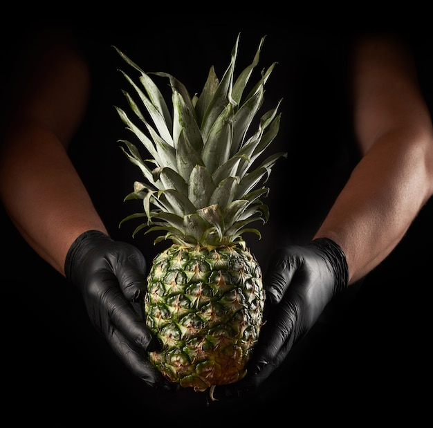 Two male hands in black latex holding a whole ripe pineapple, black background