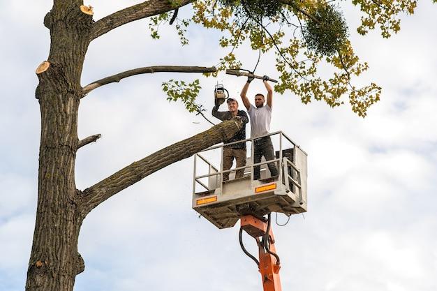 Двое рабочих-мужчин рубят большие ветви деревьев бензопилой с платформы кресельного подъемника.