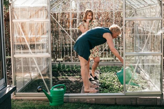 온실에서 정원 가꾸기, 플라스틱 물을 수있는 식물에 물을주는 두 명의 성숙한 여성