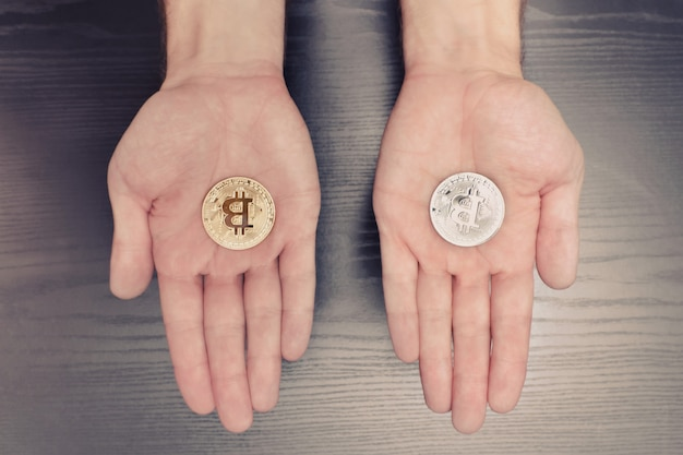Two men's palms with a bitcoin coin, business concept