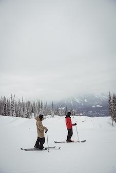 Двое мужчин катаются на лыжах на снежных альпах на горнолыжном курорте