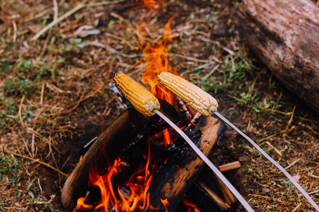 Two metal skewers with skewered corn are held over the fire