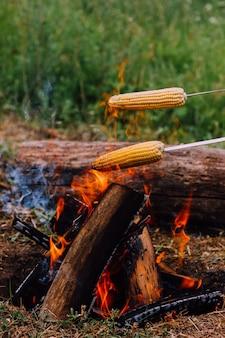 Над огнем держат две металлические шампуры с нарезанной кукурузой. жарить овощи на открытом воздухе в дикой природе. концепция кемпинга