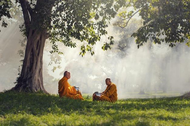 태양 광선, 부처님 종교 개념 나무 아래 두 승려 명상
