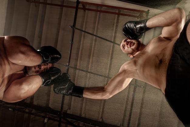 Due uomini muscolosi che combattono, culturisti che si danno un pugno l'un l'altro, che si allenano in arti marziali, boxe, jiu jitsu