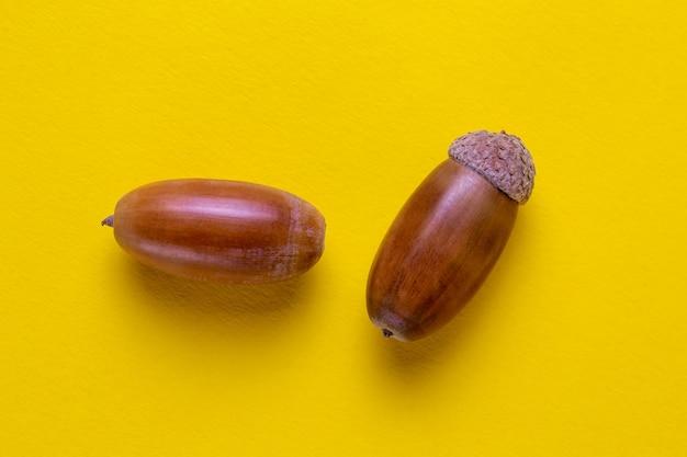 Два дубовых желудя на желтом фоне