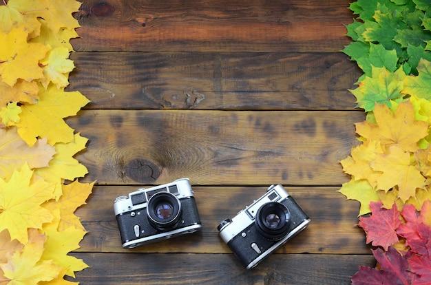 黄変落ち葉のセットの間で2つの古いカメラ