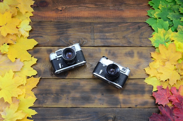 Two old cameras among a set of yellowing fallen autumn leaves on a background surface of natural wooden boards of dark brown color