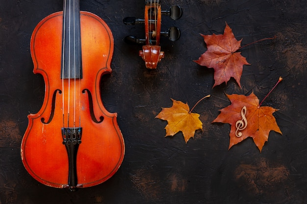 Two old violin with yellow autumn maple leave.
