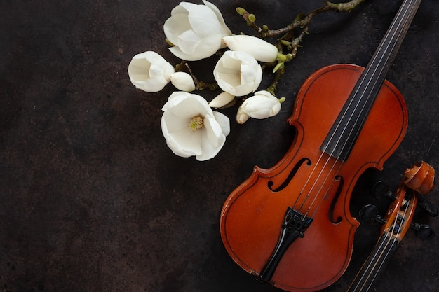 Two old violins and blossoming magnolia branches. top view, close-up on dark vintage