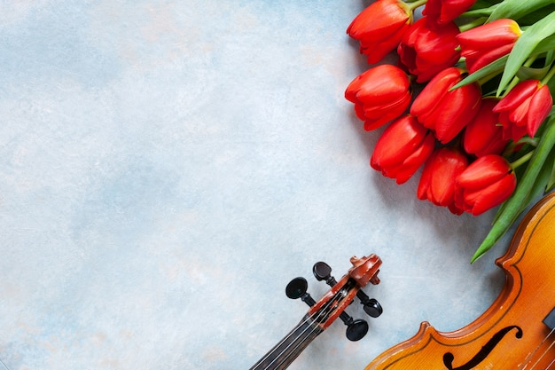 Two old violins and bouquet of red tulips. valentine day
