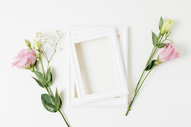 Two painted frame with pink eustoma and baby's-breath flowers on white background