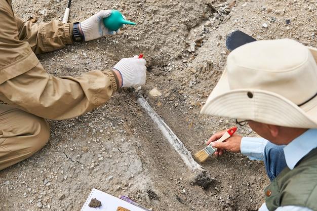 2人の古生物学者が砂漠の地面から化石化した骨を抽出し、遺跡に焦点を当てます