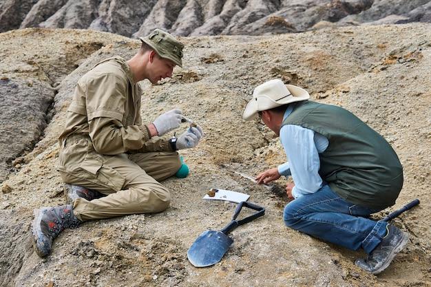 2人の古生物学者が砂漠の地面から化石化した遺物を抽出します