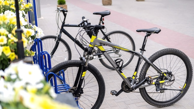 Two parked bicycles on a street near a road, flowers